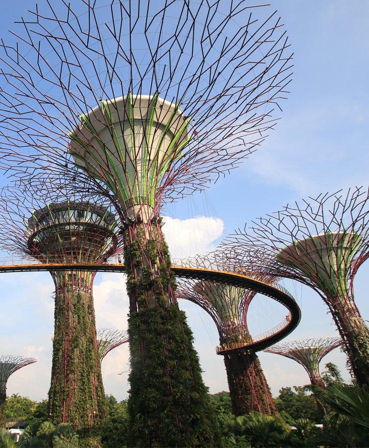 Singapore cycling tours